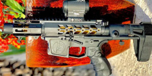Breachers Custom AR9